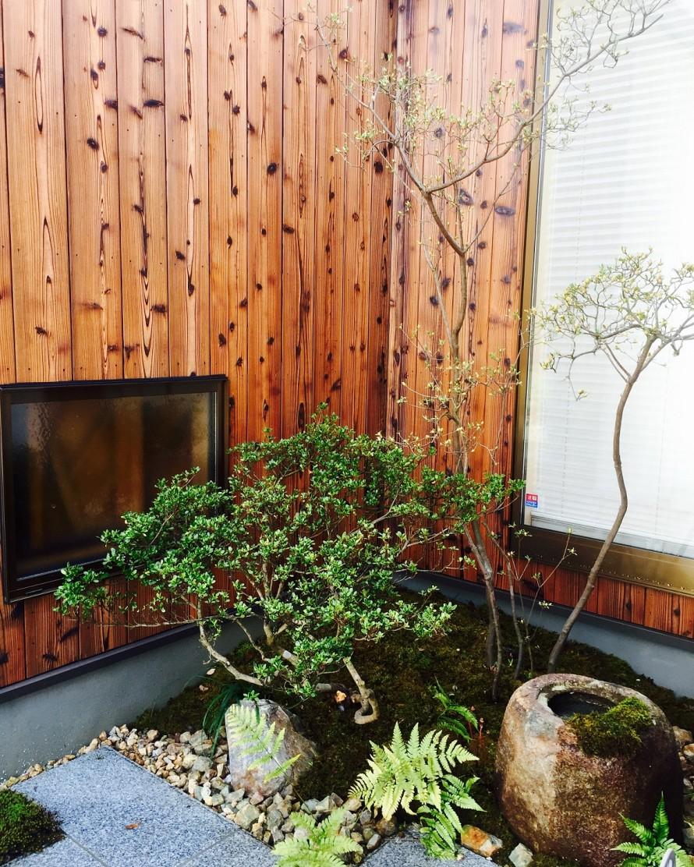 玄関ポーチ前の植栽