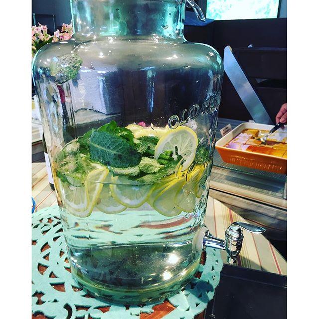 #ハーブの季節#ハーブを楽しむ方法先日訪れた、ローザンベリー多和田さん。そこでランチブッフェを楽しんだのですが、とても気に入ったものがありました。今話題のデトックスウォーターでしょう、輪切りのレモンとスペアミントのお水。スペアミントって苦手と思っていたけれど、とても美味しくて、何杯もお代わりしました。ガラスのサーバーも素敵♡スペアミントを収穫したら試してみます!#スペアミント#スペアミントとレモンのデトックスウォーター#メデルガーデン