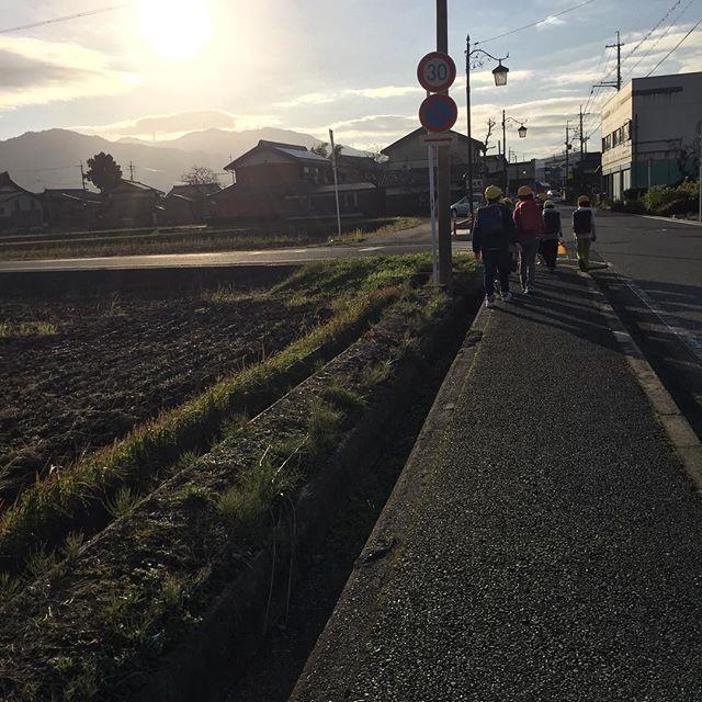 #朝日今朝はぴかぴかの朝でした。黄金色の太陽が眩しくて嬉しくて、思わずパチリ</p> <div id=