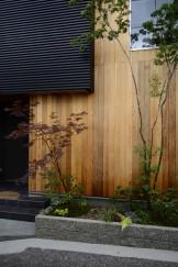 エントランス脇にある雑木の坪庭