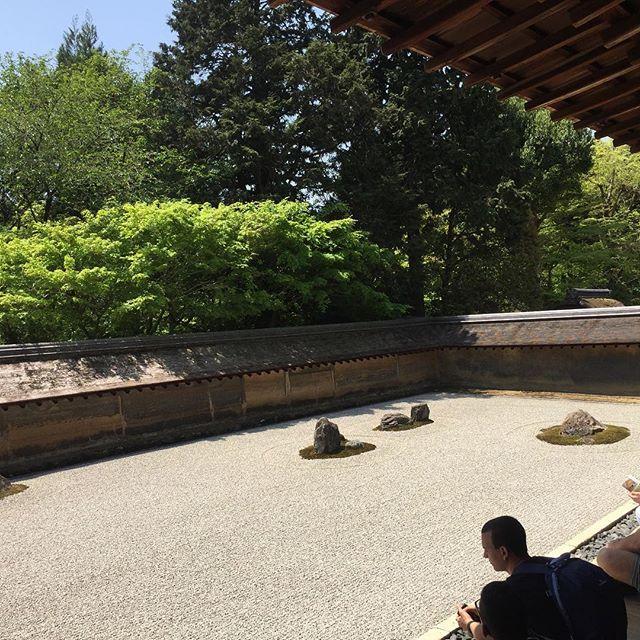 #新緑の京都旅いつまでも眺めていたいのでした。#新緑#京都旅#庭