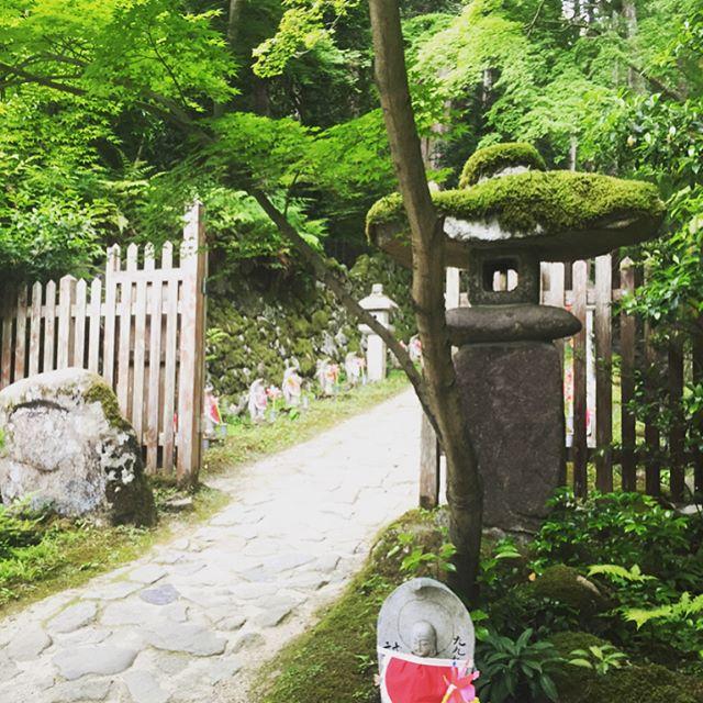 #金剛輪寺アジサイを見に金剛輪寺へ参りました。まだ少し早かったかなでしたが、可愛らしいお地蔵さんに心が癒されました♡#湖東三山の真ん中#近江を愛でる#メデルガーデン#こうようえん
