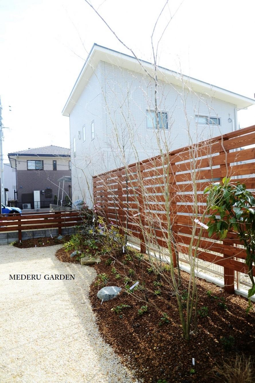 鳥の集まる庭(初春) 長浜市