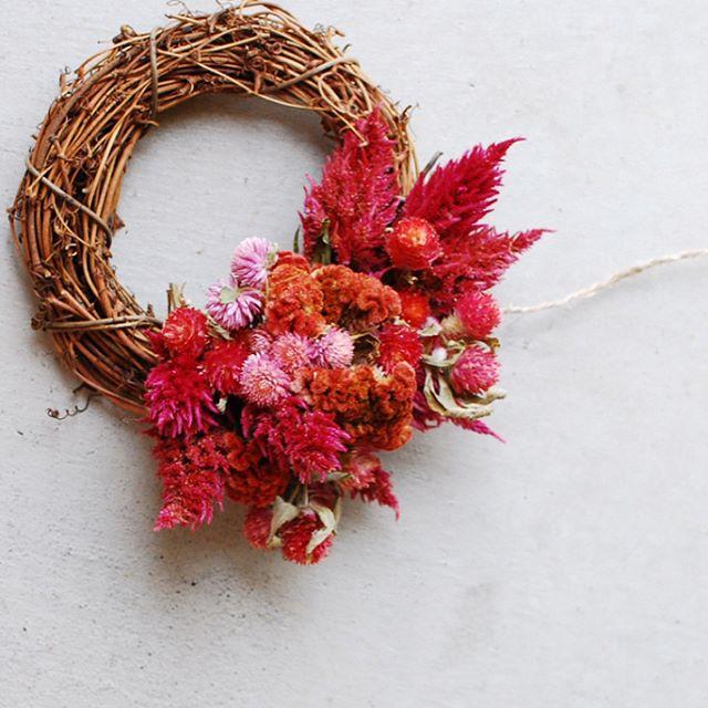 #真夏の赤#8月のリース真っ赤な花たちを集めてリースを作りました。ケイトウって昔は苦手なお花だったけれど、今はあのベルベットな質感とかニワトリのトサカを思わせる姿が好きです。#センニチコウ#ケイトウ#メデルガーデン#光葉園#wreathe