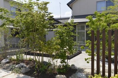 庭と駐車スペースの境界に雑木を