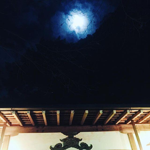#初詣#⛩ あけましておめでとうとございます。今年もよろしくお願いします。年末年始は京都で過ごしました。天王山麓にある小さな神社へ初詣。あったかい、冬じゃないみたいな、穏やかな夜。お月さんが綺麗でした。2018年元旦#大山崎町#小倉神社#元旦#綺麗な月#お正月