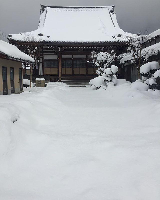 #雪の日ご近所のお寺です。毎日ご近所の皆さんで雪かきされていますが、またまた昨日でこんなこと。でも、雪に埋もれたお寺も情緒があって素敵な景色。#雪の日の景色#東近江市