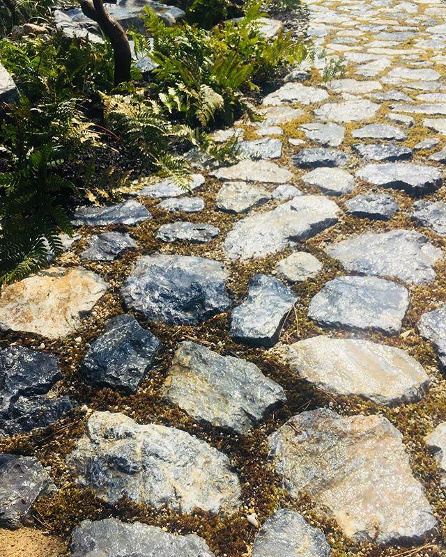 #園路#石畳み多賀鉱石を使った園路です。滋賀県で採れるこの石、ステキなんです。#近江石#庭づくり#日本庭園#光葉園#メデルガーデン