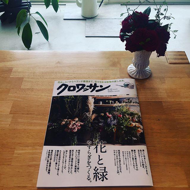 #雨の日#読書久々に手に取ったクロワッサン。大好きな松田行弘さんや平井かずみさんが載っていました。花やみどりと共にうまくすてきに暮らすコツが満載でしたよー。おススメ♡#おすすめ本#雑誌#クロワッサン#花と緑#日々を彩る植物の楽しみ方#雨の日は読書#もうすぐ梅雨入りかな