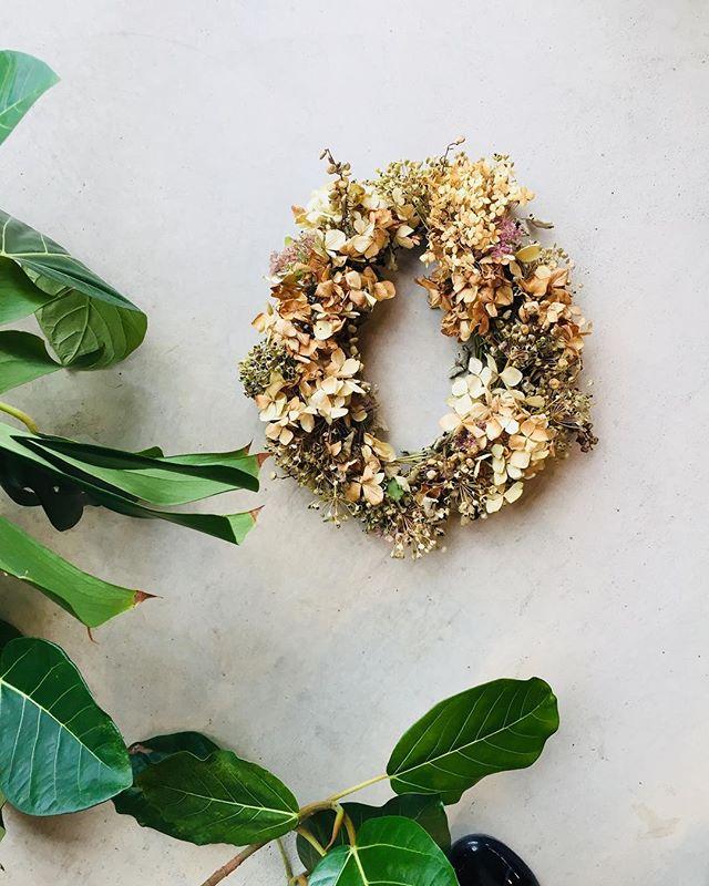 #にらの種子ニラの種子が可愛いくて、オーバルリースにしました。ベージュなアジサイドライを添えて。ここここ日和さんで販売中。お店は毎週水曜日木曜日10時半〜#autumn#ドライフラワー#wreathe#メデルガーデン#ここここ日和