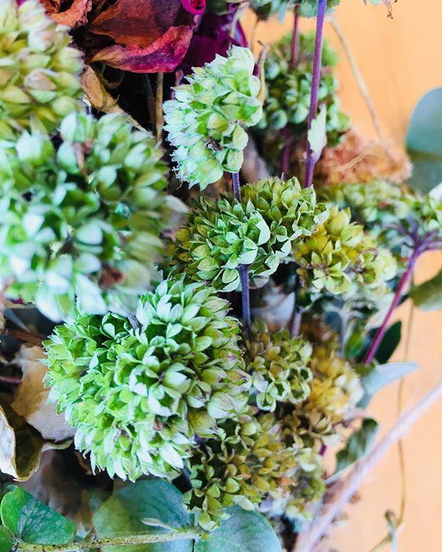 #ダンギク ダンギクの花柄はグリーンのマムみたい。花束にしました。#秋の草花#メデルガーデン