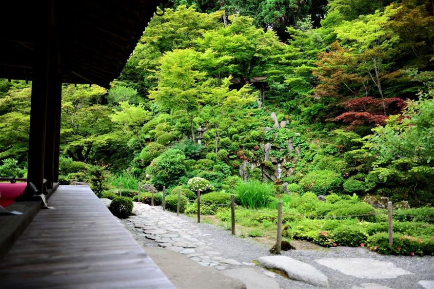 縁側に腰をかけて眺めた庭