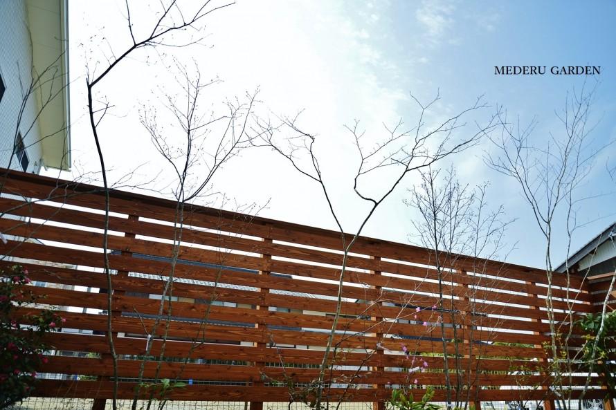 天然木のウッドフェンスと雑木 春の庭