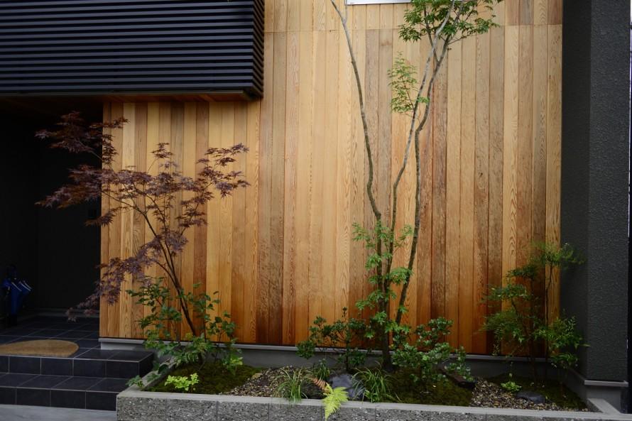 東近江市和モダン住宅の植栽