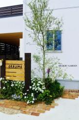 枕木の門柱とオリーブの木 春