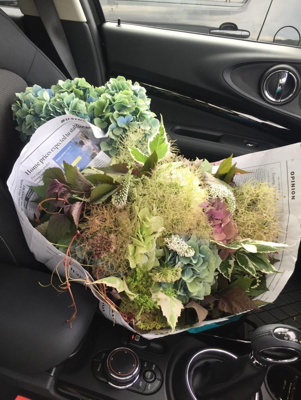 アキイロ紫陽花のブーケを連れて帰る