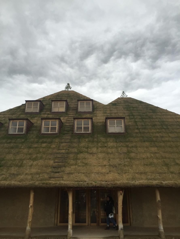 芝生屋根の建物