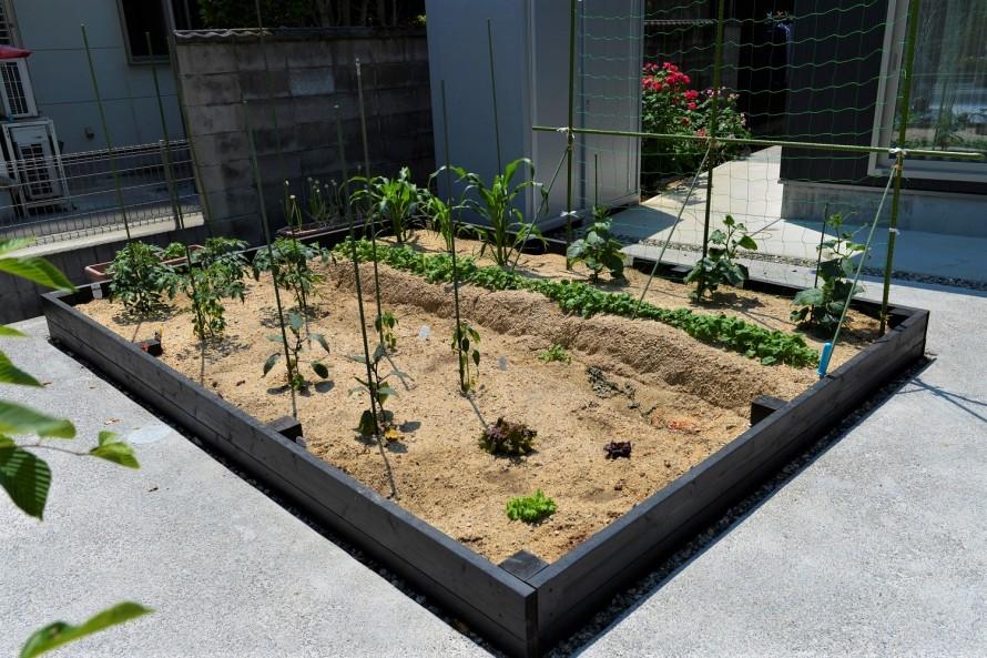 エコアコールウッドで囲った家庭菜園
