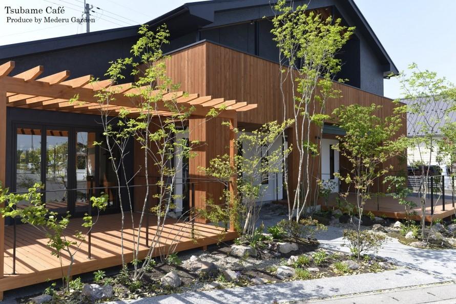 Tubame Cafe 5月 OPEN